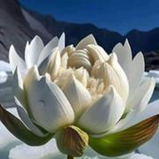 Валентина Виноградова on My World.