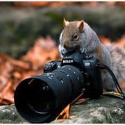 Шедевры фотографии  group on My World