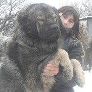 Ольга Красникова on My World.