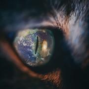 Сергей Шпет on My World.