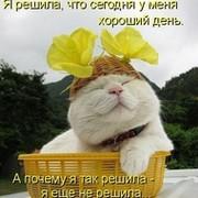 ТВС ))) on My World.